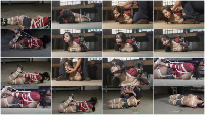 Kimmy Lee Hogtied in the New Studio part 3