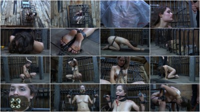 Conjugal Visit Bonus (9 Dec 2015) Infernal Restraints