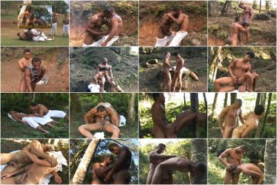 Capoeira 5 Brazil