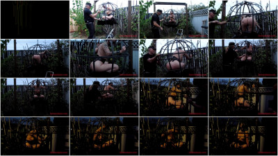 Sensualpain — Jul 21, 2016 - Sphere Cage Fuckery at Dusk — Abigail Dupree