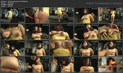 bdsm Extreme Tit Torment 18 - Giselle