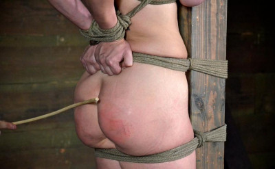 bdsm Perfect satisfaction For Bitch Part 3