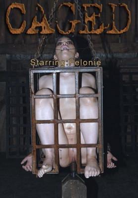 bdsm Felonie Caged