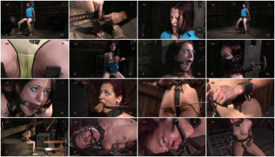 Insex - 129 at the Farm (129)