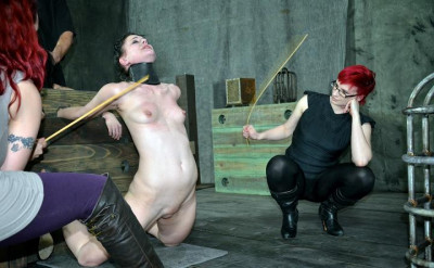 Double BDSM fantasy