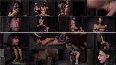 Hot Tears Part Two Elise Graves Sister Dee