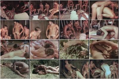 Seven In A Barn (1969)