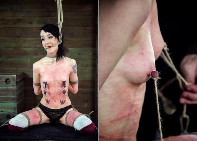 Beat The Bunny- BDSM Sex Training