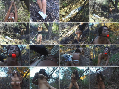 Deep In The Woods 2