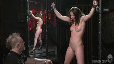 BDSM   The Whip Chamber   Casey Calvert (2011)