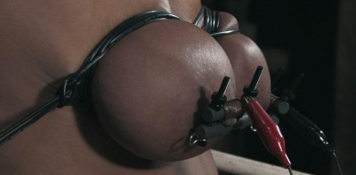 Electric Nipple Clamps