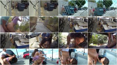 Public Penetration 1 (2015)