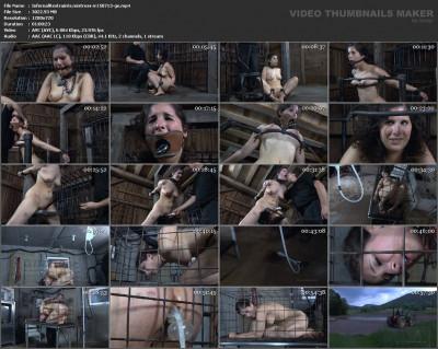 Worthless Cunt Part 3 Bonus , HD 720p (usa, stud, spa, enema, tit)