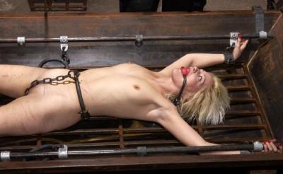 The BDSM Prostitute (Misty)