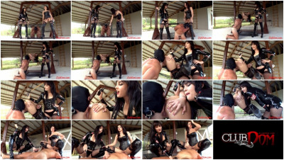 Ball Shocked Ass Licking Bitch - Alexis Grace & Elena Sin