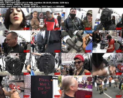 The 2012 Folsom Street Fair 3 and 4 (2013)