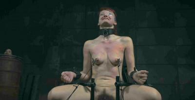 The proud slave