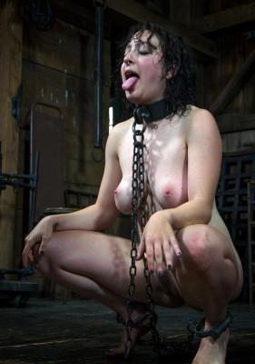 Excellent BDSM show