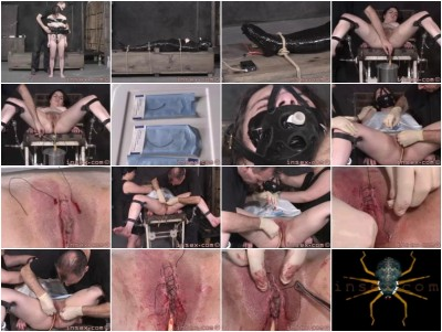 Insex - Yx 24h Live Feed 3 Part 3
