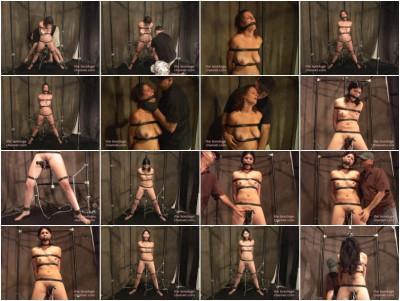 The Orgasm Bar 24 (2010)