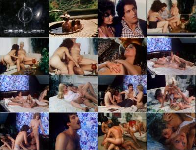 Sekas Fantasies (1981)