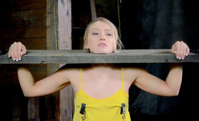 Beautiful blonde AJ Applegate stuck in stocks, drilled down with brutal deepthroat