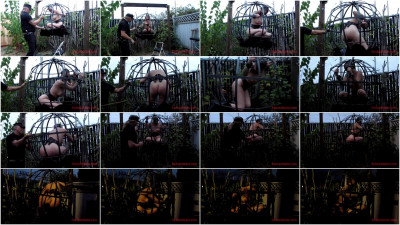 bdsm Sensualpain - Jul 21, 2016 - Sphere Cage Fuckery at Dusk - Abigail Dupree