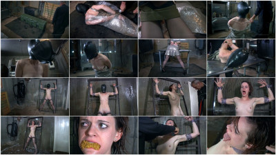 Safe House 2 Part 1 Hazel Hypnotic
