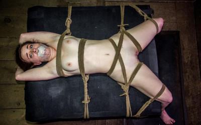 The world's best BDSM sex