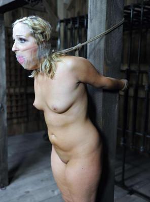 BDSM Shock