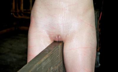 The Most Beautiful BDSM Virgin