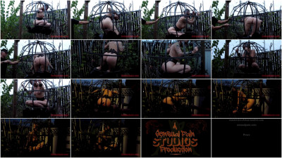 bdsm Jul 21, 2016 - Sphere Cage Fuckery at Dusk - Abigail Dupree