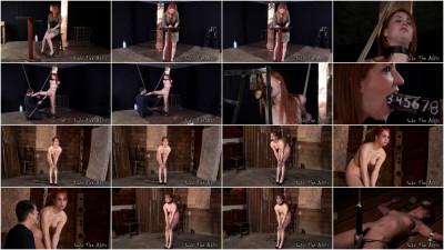 Calico Lane Humiliation, Torture (2010)