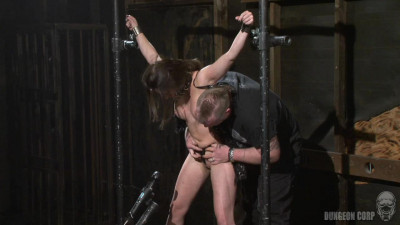 BDSM   The Whip Chamber   Casey Calvert (2011)