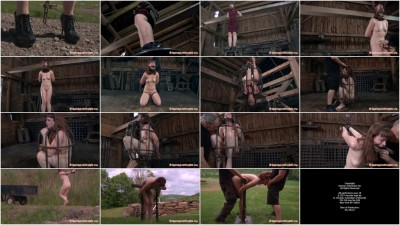 Hazel Hypnotic & PD & Matt Williams — Back to the Barn