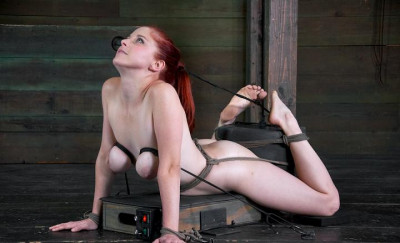 Hot Penny Pax to be in agony