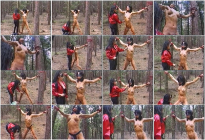Torture in a wood