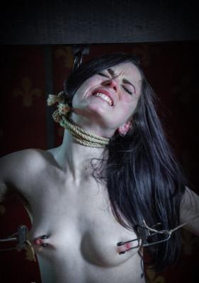 bdsm Ivy Addams, Jack Hammer - Hard Case