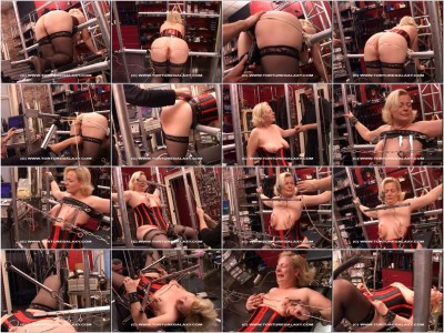 bdsm TG2Club - Torture Galaxy 29 scenes 2015-2016