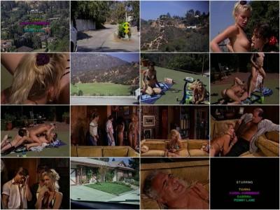 Hollywood Bikini Party Girls