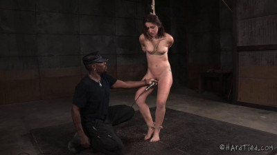 Sexy  Mandy Muse