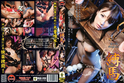 Wu Rui Saotome horse tied its (2010) DVDRip