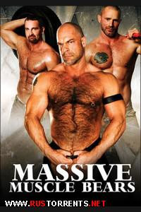 [Massive Studio] Massive Muscle Bears