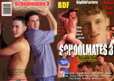 Schoolmates 3: Youthful Indiscretions (2001)