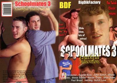 Schoolmates 3: Youthful Indiscretions (2001)