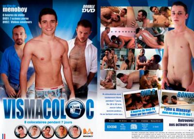 Vis Ma Coloc (2010)
