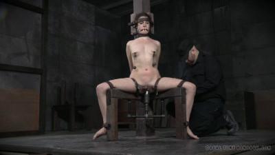 Bondage Monkey Part 2