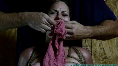 4 Positions & 2 Gags For Lexy Mae - FS
