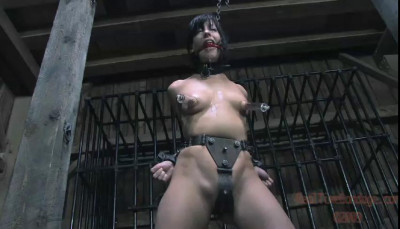 Chinese Water Torture Elise Graves