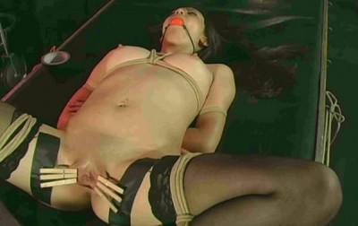 Pin Cushion Tits Madison